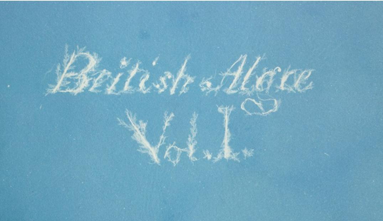 british algae